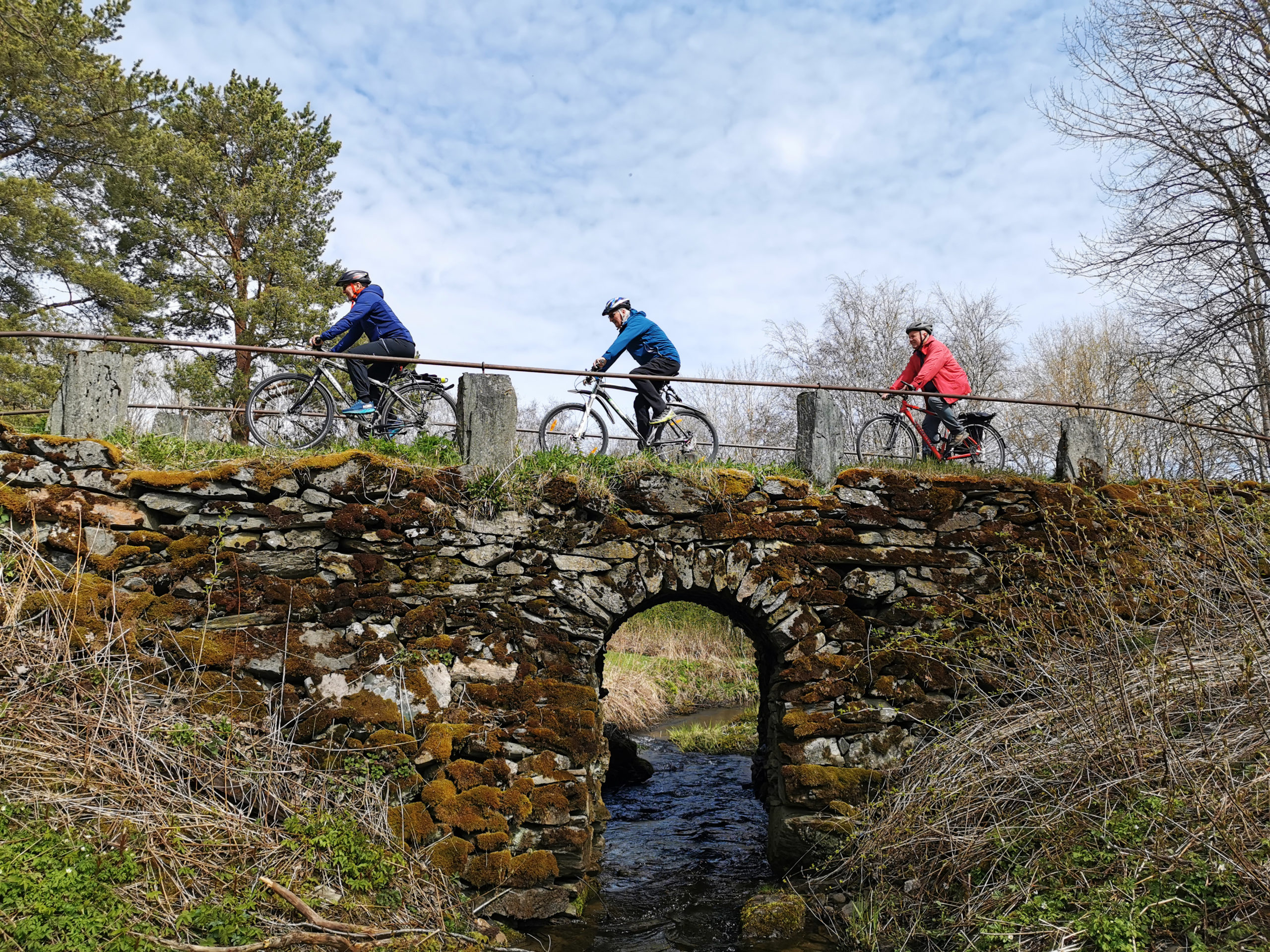 Sykkeltur i Bymarka